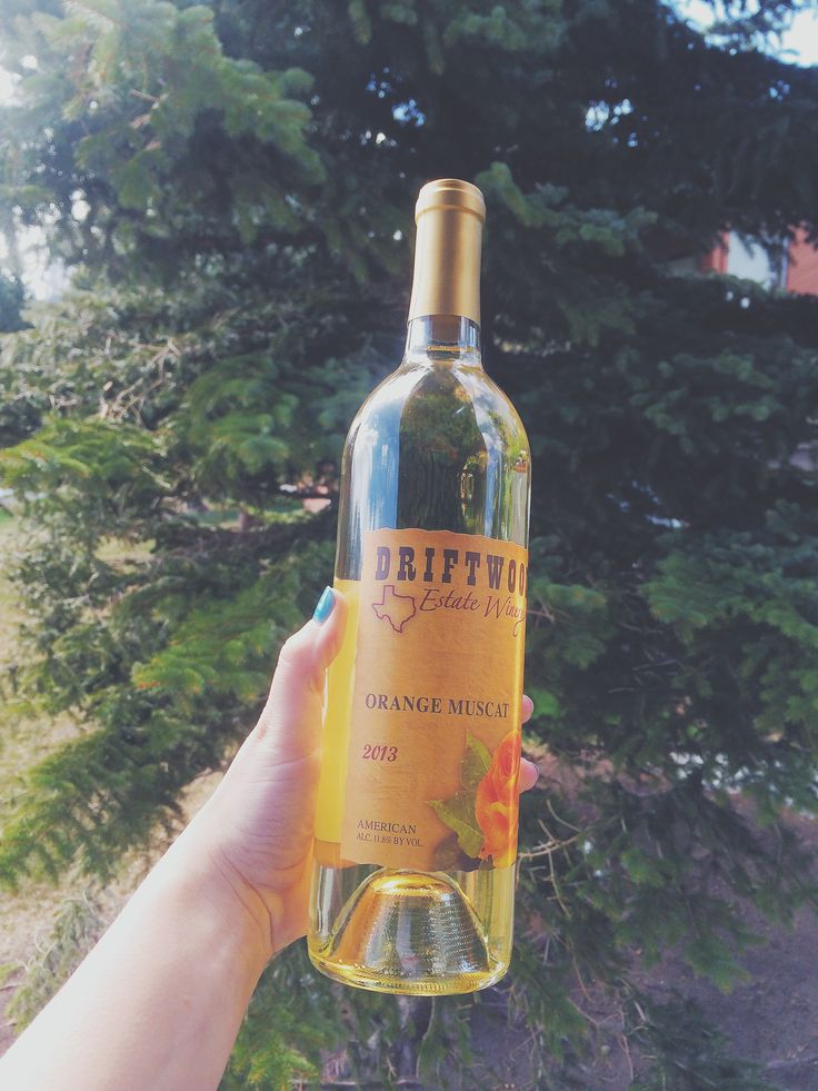 Happy Earth Day from Driftwood Estate Winery! Make sure you recycle those empty wine bottles or use them for a DIY project! // Photo by: @laura13elliott