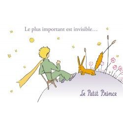 57 best images about le petit prince on pinterest unique flowers foxes and origami. Black Bedroom Furniture Sets. Home Design Ideas