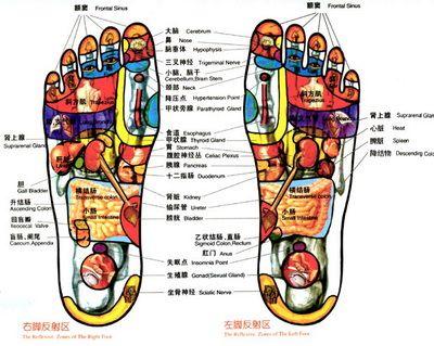 Chinese Foot Massage Diagram