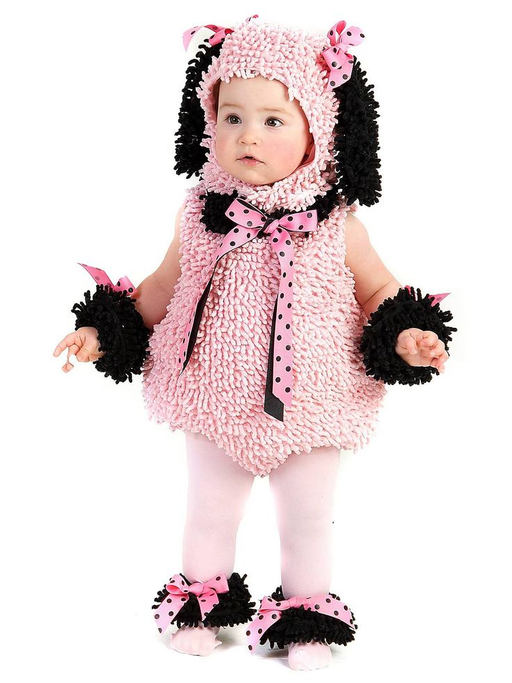 in this baby pinkie poodle costume your baby will be ready to head out for trick - Where To Buy Infant Halloween Costumes