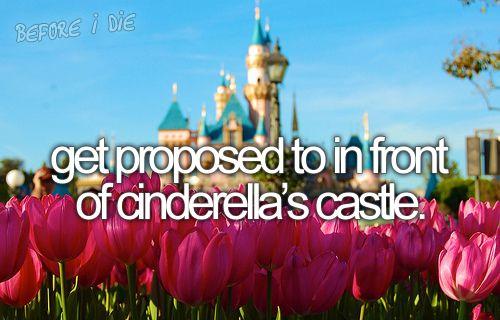 Cinderellas Castle  dream wedding -  #cinderella castle -  wish  #disney land proposal -  #engagement proposal  my big day