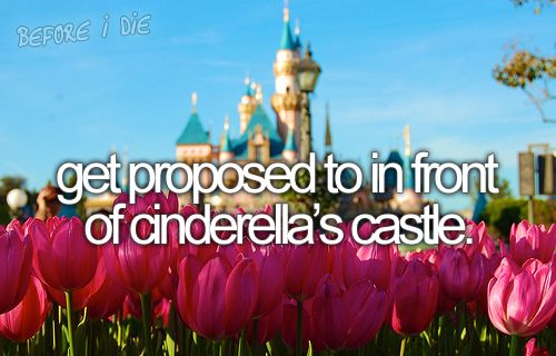 Cinderellas Castle  dream wedding -  #cinderella castle -  wish  #disney land proposal -  #engagement proposal  my big day