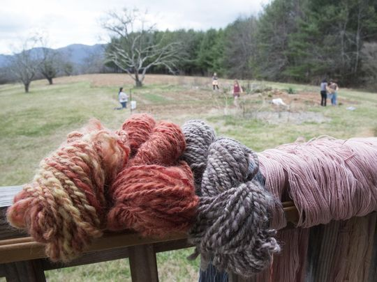 Yarn dyed from plants grown in Warren Wilson College's