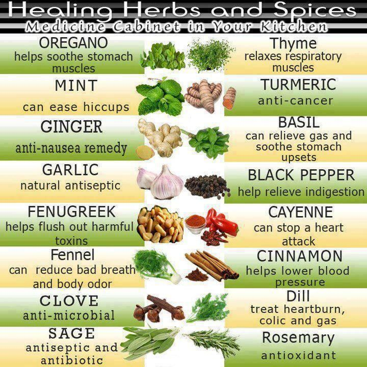 How to Freeze Fresh Herbs - We love loving buying in season herbs and freezing them for later.