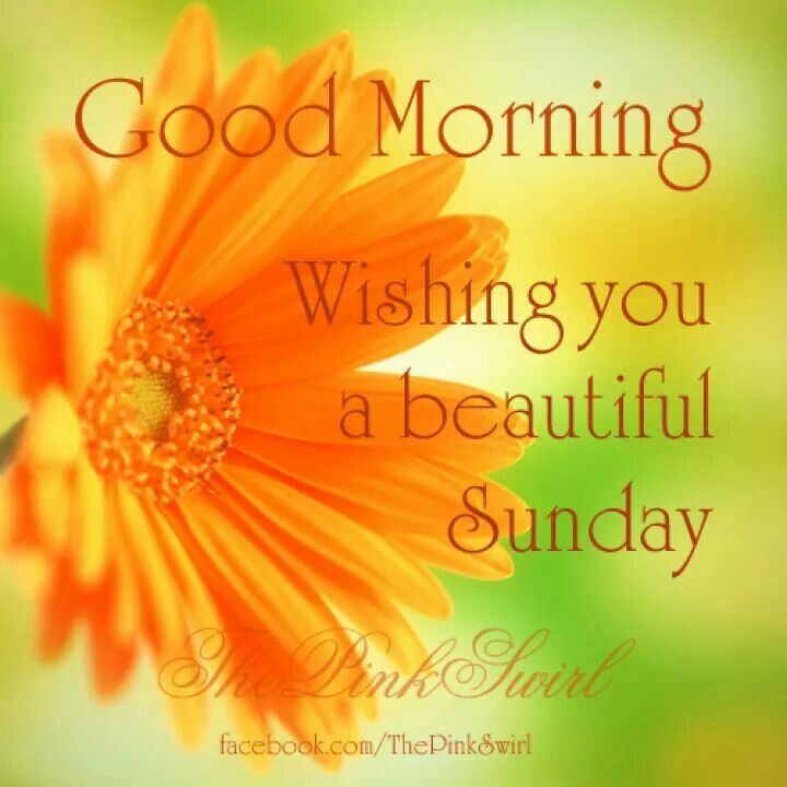 beautiful sunday morning Sunday is a wonderful day to spend in the circle of your family and friends, make impressions for the whole week today bathe in a sea of euphoria and bliss today, good morning wake up, it.