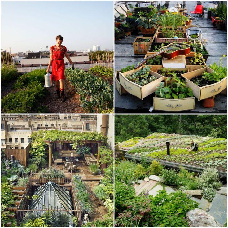 25 Rooftop Gardens