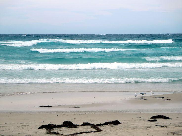 Meelup Beach near Dunsborough in Western Australia is a favourite surfing spot.