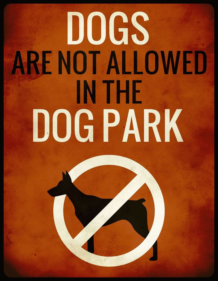 Welcome to Night Vale.  Episode 1: Pilot   -  A quote from Welcome to Night Vale made up into a sign found on the railings outside the dog park.  Strange that it's so worn- I thought the dog park was brand new?  Not that I've been thinking about the dog park, of course.  Nope, not even a bit. -QH