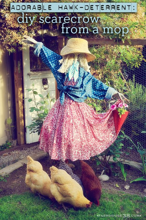 Scarecrow Hawk Deterrent from Farmhouse38 .....a scarecrow with style and attitude...and adorable!