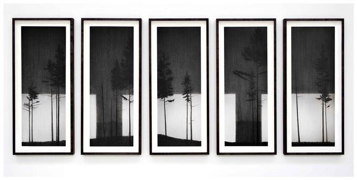 Reece Jones@ All Visual Arts
