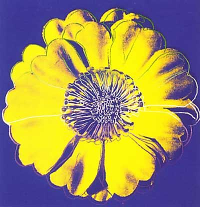 Andy Warhol  i think the flower photos would be so cute in a kids room