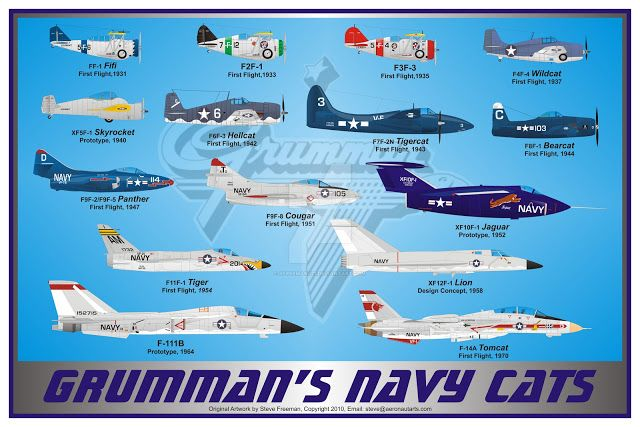 Naval Analyses: INFOGRAPHICS #25: United States Navy Blue Angels, Grumman's  Cats and United States fi… | Us navy aircraft, Navy aircraft carrier,  United states navy