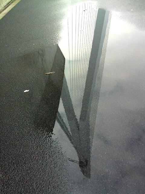 Erasmusbrug in de weerspiegeling van een waterplas