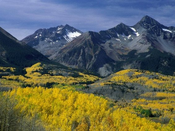The aspen-covered mountains of Colorado