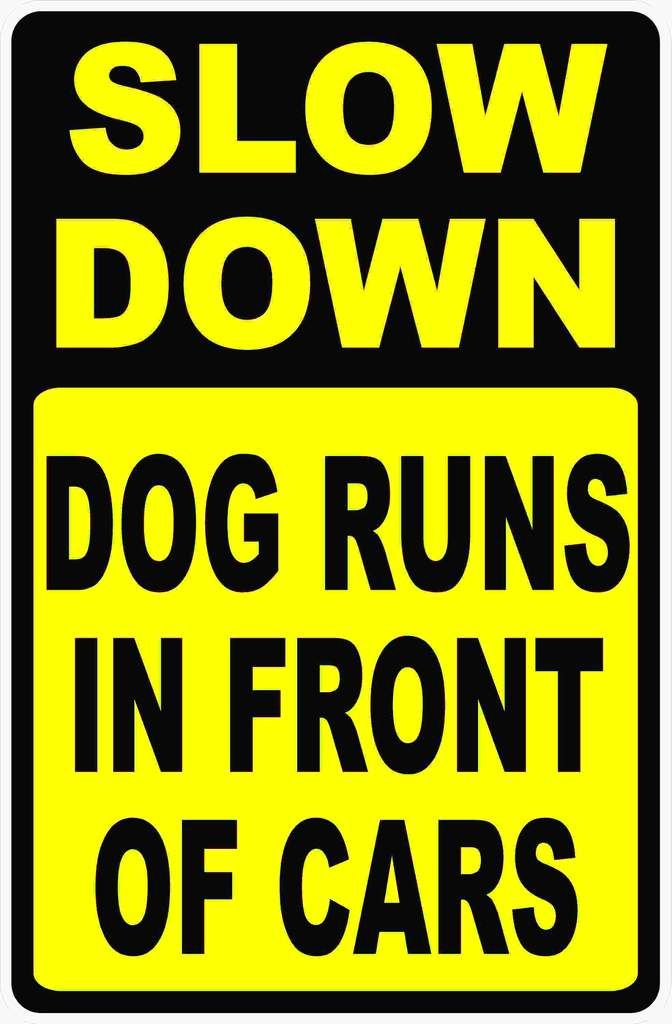 Slow Down Signs >> Slow Down Dog Runs In Front Of Cars Slow Down Signs Dog Runs