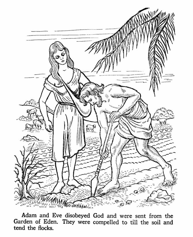 Adam working in the Garden of Eden Coloring page. | Ask your Sunday ...