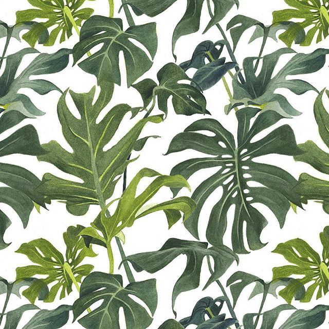 Monstera watercolour pattern - Louise Jones