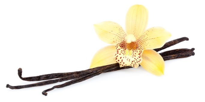 In Europe, vanilla was once used in the production of certain medicines such as nerve stimulants and as an aphrodisiac.