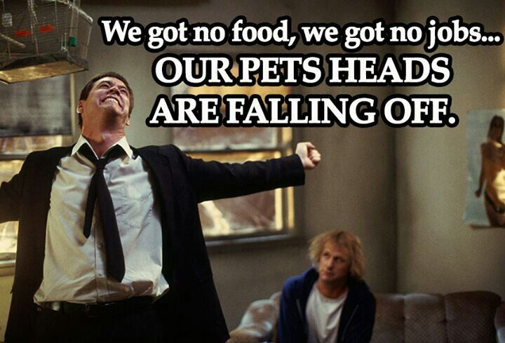 Our pets heads are falling off: