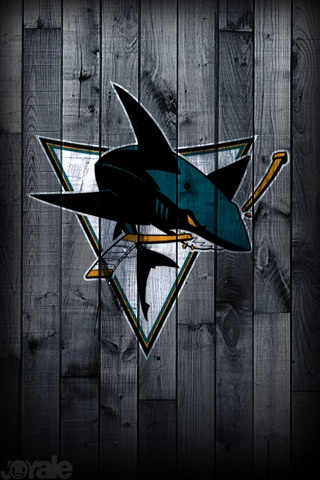 This is Sharks Territory