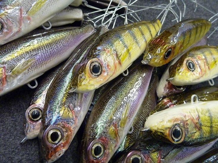 619 best fish stuff images on pinterest for Fishing lure paint