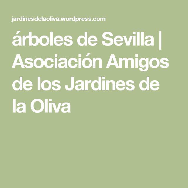 árboles de Sevilla | Asociación Amigos de los Jardines de la Oliva