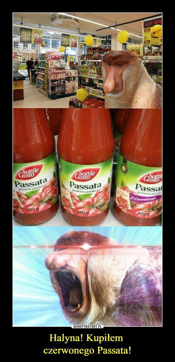 Halyna! Kupiłem czerwonego Passata! –