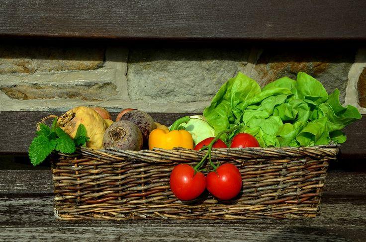 14 טיפים שיעזרו לכן לשמור על תזונה נכונה, שפיות ושעות שינה