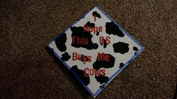 Graduation Cap, Graduation Cap Decoration, Graduation Cap Topper, Animal Science, Bachelor of Science, Agriculture, Cowhide, Cow Print, Cows, Livestoc...