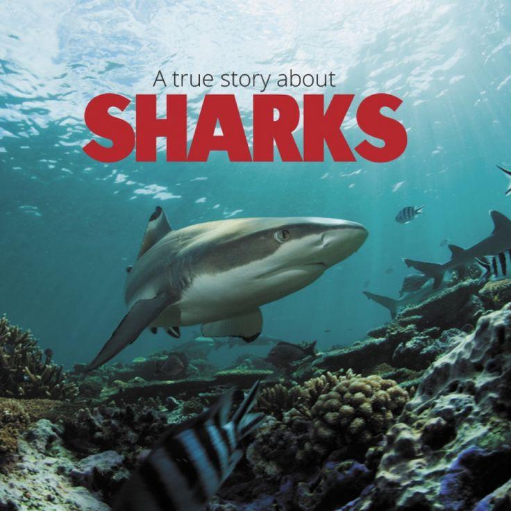 Skutečný příběh žraloka