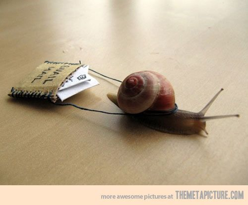 Snail Mail…I am now on a mission to find a snail.<>