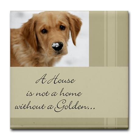 A House is not a home without a Golden...