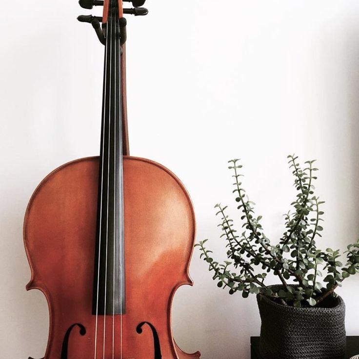 @kamplainnn ❃ music photography cello
