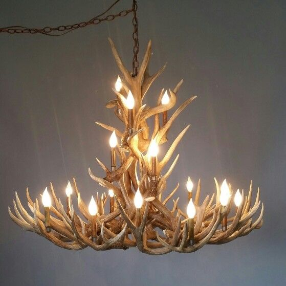 109 best antler chandeliers custom antler lighting images on 538 l crestone peak mule deer antler chandelier has a concave swirling aloadofball Choice Image