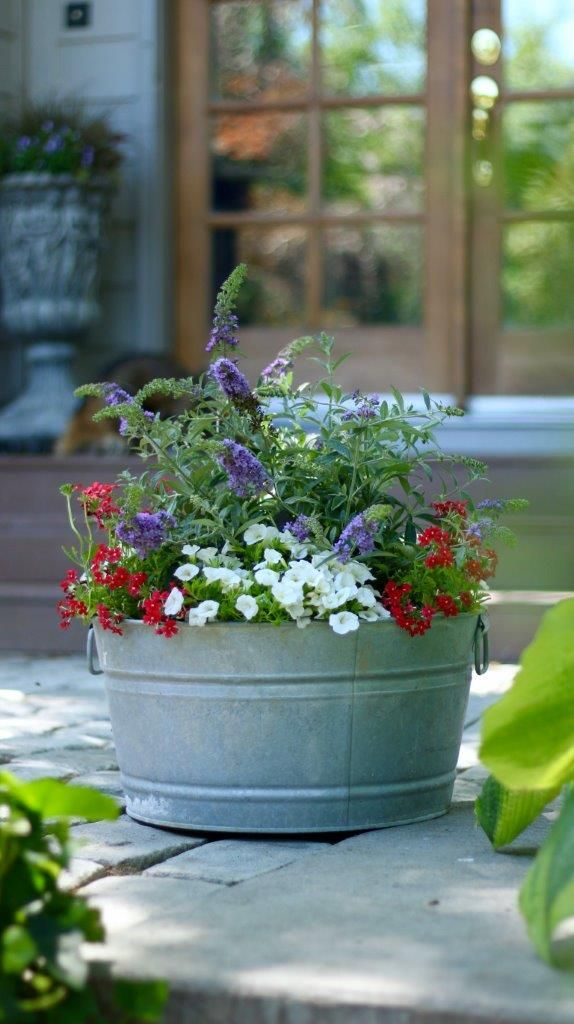 Simple Flower Garden Ideas Videos Not Love This Container So A