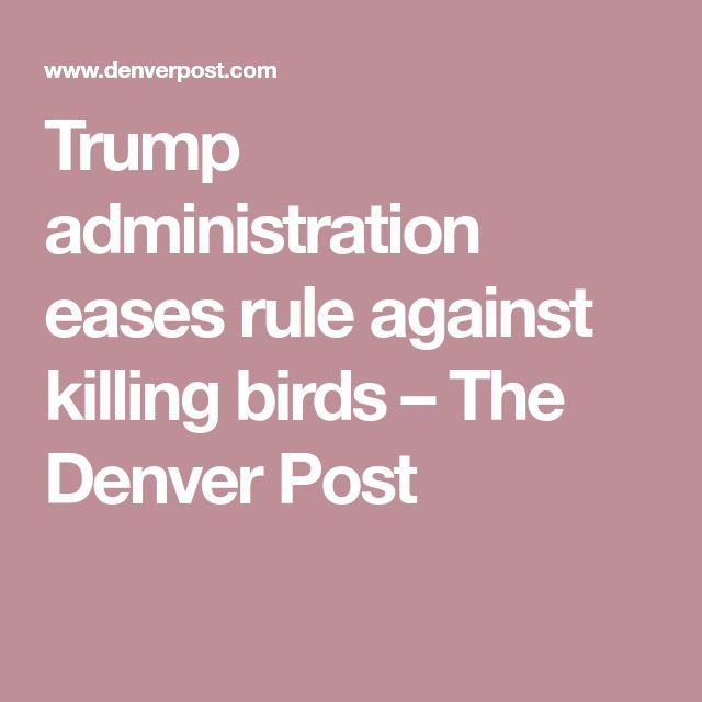 Trump administration eases rule against killing birds – The Denver Post
