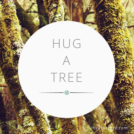 Well you don't have to HUG it, but even brushing up against a tree is a great way to restore, ground and protect your energy as you absorb their life energy into your own.   Download Ground, Clear & Protect Your Energy meditation recordings at http://shop.thelittlesage.com/product/ground-clear-protect-your-energy