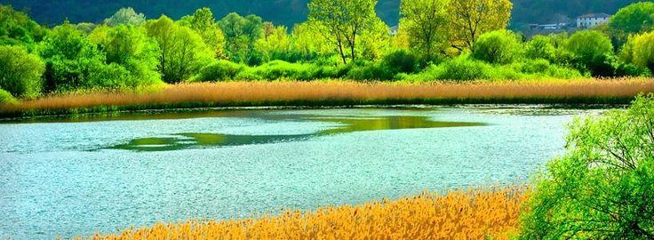 Lungo, Ripasottile, Ventina: oasi naturale