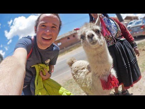 """""""Perú en 120 segundos"""": Llamas felices - YouTube"""