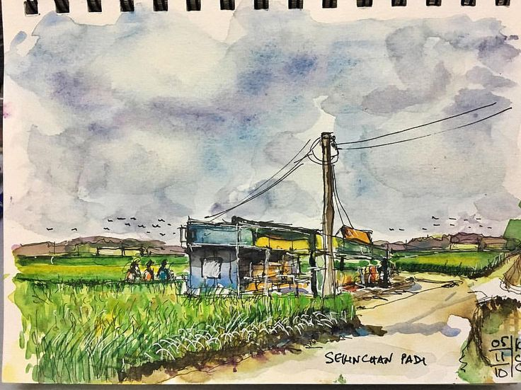 2nd sketch in Sekinchan....padi field. Sekinchan is one of the major rice producing areas of Malaysia. The vast, well-irrigated and organized paddy fields around Sekinchan produce one of the highest yields of rice in the country. #stillmanandbirn #holbein