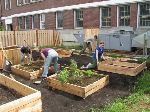 How To Build A Raised Off The Ground Flower Bed With