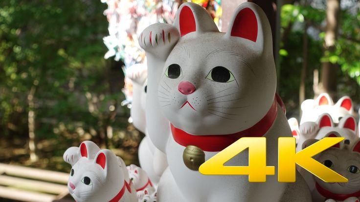 Gotokuji Temple / Maneki Neko - 豪徳寺 - 4K Ultra HD
