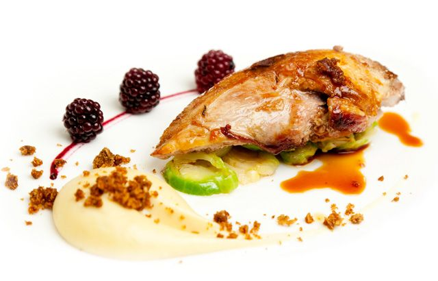 Roast pheasant breast with parsnip purée, parkin and pickled brambles