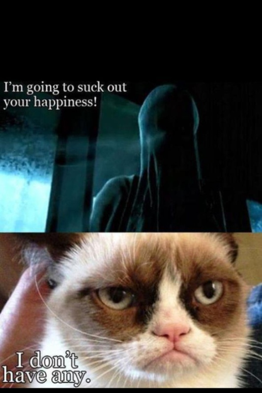 Harry potter dementors grumpy cat | Nerd Humor | Pinterest ...