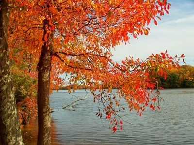 Welcome to the first day of my favorite season!! First Day of Fall, Autumnal Equinox, 2012 is today, Saturday, September 22 :)