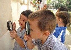 #weeknewslife #futuro Come la #curiosità cambia il #cervello e ne migliora l'#apprendimento