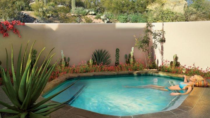 Oasis One Bedroom Suite Four Seasons Resort Scottsdale