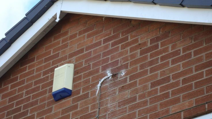how to get rid of bumble bees nest in wall cavity