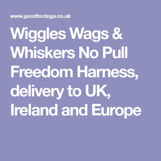 Wiggles Wags & Whiskers No Pull Freedom Harness, delivery to UK, Ireland and Europe