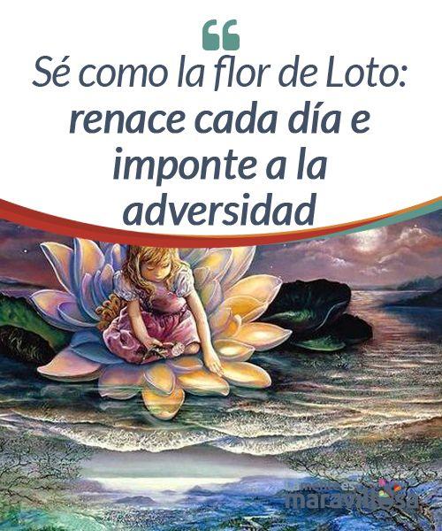 Sé como la flor de Loto: renace cada día e imponte a la adversidad  La naturaleza es tan apasionante que nos da las respuestas más inesperadas cuando ni tan siquiera creíamos que podían existir más allá de nuestra mente, de nuestra esperanza y de nuestro deseo por seguir adelante.